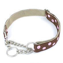 picture of a martingale collar
