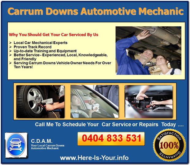 Automotive Mechanic Carrum Downs