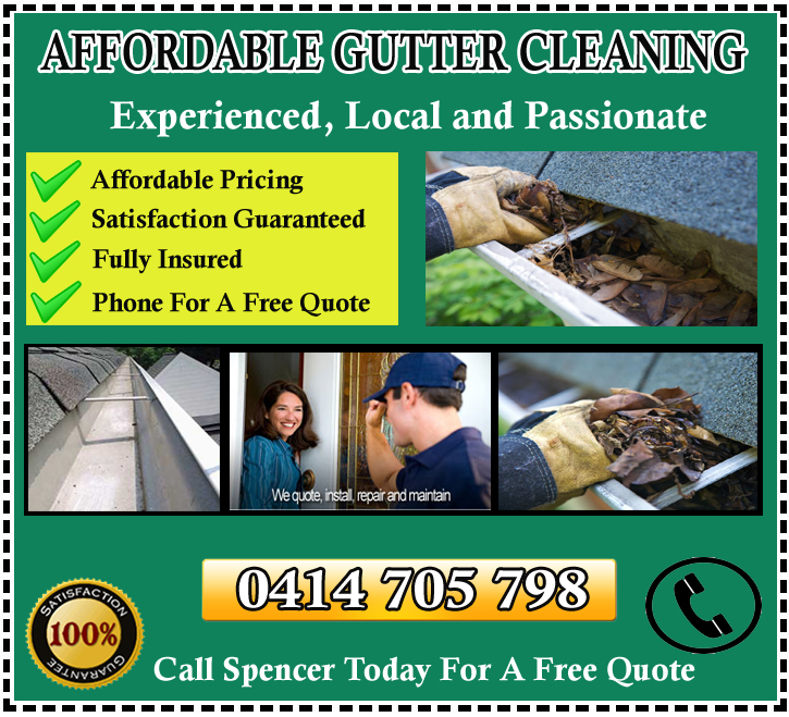 Gutter Cleaning Frankston