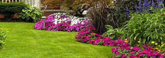 Landscape Gardener Frankston
